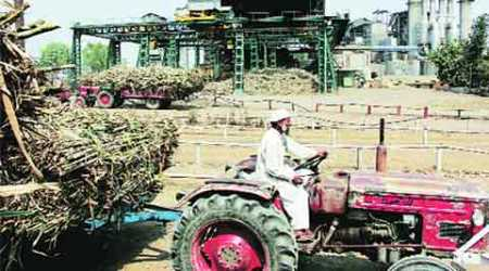 UP: Pvt sugar mills in state refuse to begin crushing if SAP not reduced