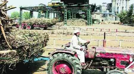 private sugar mills, sugar mills, UP sugar mills, Samajwadi Party government, SP govt, sugar price, sugar SAP, lucknow news, uttar pradesh news