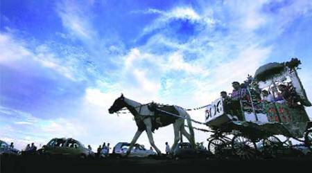 horse-drawn carriages, mumbai horse-drawn carriages, bombay horse-drawn carriages, victoria carriages, mumbai victoria carriages, horse-drawn victoria carriages, mumbai news, india news, indian express news #Explained