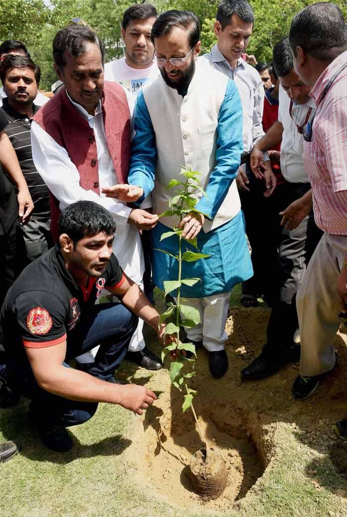 World Environment Day, Narendra Modi, Arvind Kejriwal, Virat Kohli, Sachin Tendulkar, Rohit Sharma, Ajinkya Rahane, Sushil Kumar, Prakash Javadekar, Rajendra Kumar Tiwari, New Delhi, Allahabad, tree plantation programme, Narendra Modi plant Saplings, Arvind Kejriwal plant saplings, Virat Kohli Plant Saplings, Sachin Tendulkar plant Saplings