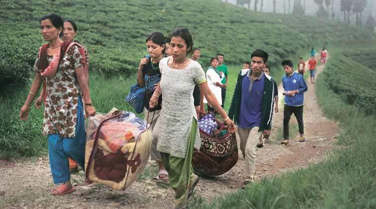 Landslide, Darjeeling landslide, Darjeeling landslide deaths, Darjeeling landslide incidents, landslides darjeeling, landslide deaths, landslide deaths in Darjeeling, Darjeeling latest news, India latest news