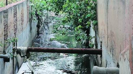 UT to replace sewer line at Kaimbwala to stop sewer water from entering Sukhna