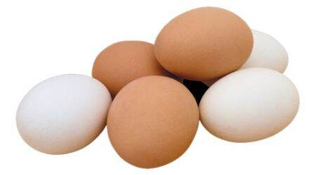 egg, egg price, price of egg, egg cost, tamil nadu egg, necc, tamil nadu necc, tamil nadu egg production, egg news, egg price go down, buy egg, india news