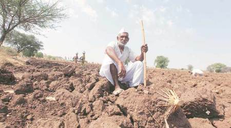 Maharashtra records 42 farmer suicides in 2 weeks