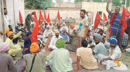 Falling demand: Punjab lease rent party ends as crop pricesplunge