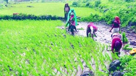 From Plate to Plough: Raising farmers' income by 2022