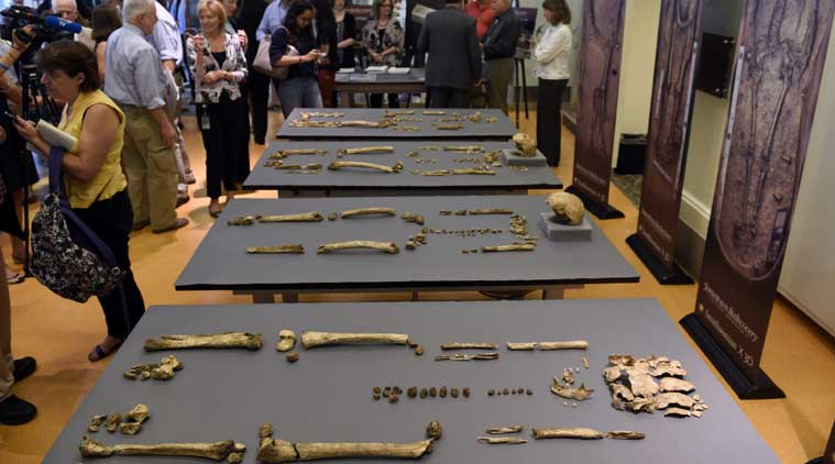 america, jamestown, america colony, english colony, jamestown virginia, Smithsonian's National Museum of Natural History, Archaeological research, international news, news