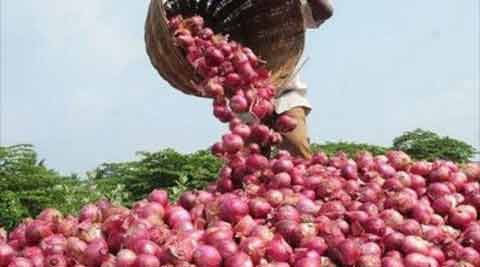 onions, onion, onion price, pyaaz, onion price rise, price of onion, Lasalgaon, Maharashtra, Lasalgaon Maharashtra, India's largest wholesale market, india news, indian express news