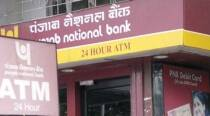 Punjab National Bank's profit falls 93% to Rs 51 cr on surge in bad loans