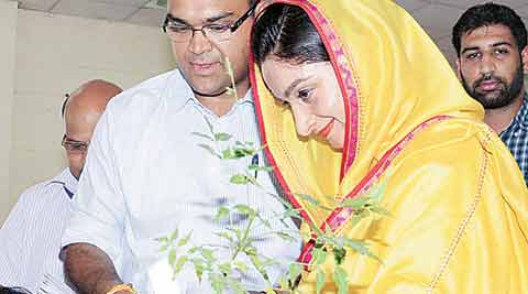 Need to find reasons for fall in Sikh population, says Harsimrat Badal