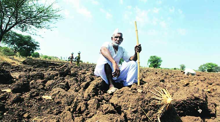 Of the 225.56 lakh hectares of cultivable land in the state, 44.19 lakh ha (20 per cent) are irrigated, the rest rain-fed.