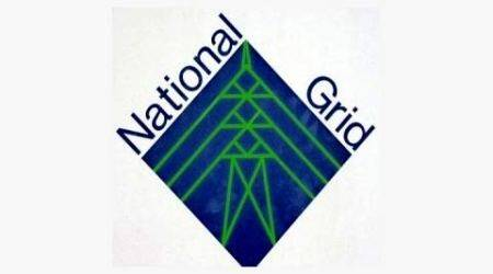 natgrid, national grid, andheria mor, plot for natgrid, natgrid plot, india news, delhi news