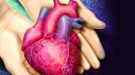 Heart from 24-year-old saves man's life in Mumbai