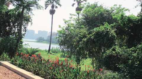 iit bombay, mumbai water, powai lake, powai lake water, powai lake water treatment, iit bombay powai lake, iit bombay water treatment project, mumbai news, india news, indian express