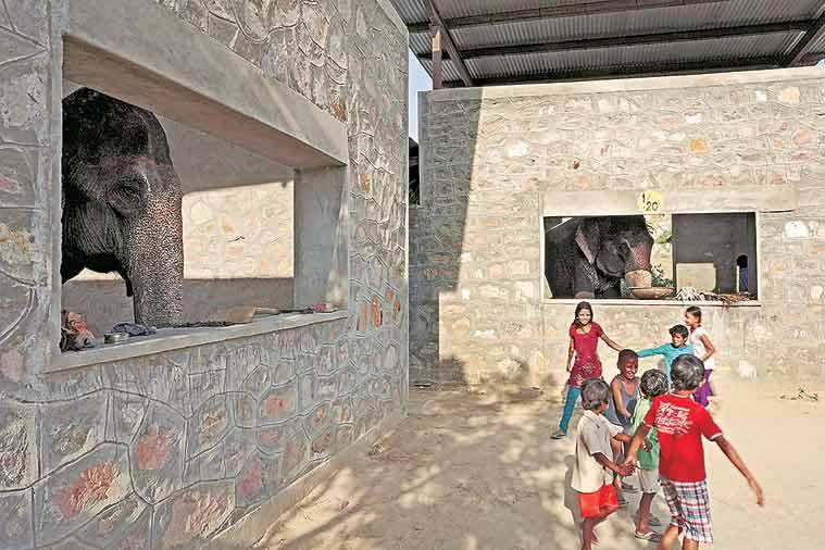 Rahul Mehrotra, Interview, Architect, Conservationist, Kumbh Mela book, urban landscapes, Green Wall, Social house, EYE