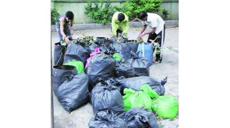 Demarcate area for wastepickers, SWACH urges civic administration