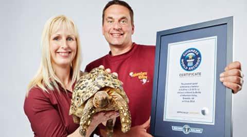 world's fastest tortoise, world's fastest animal, trending videos, viral videos, guinness world records, guinness videos, #viral, viral news,