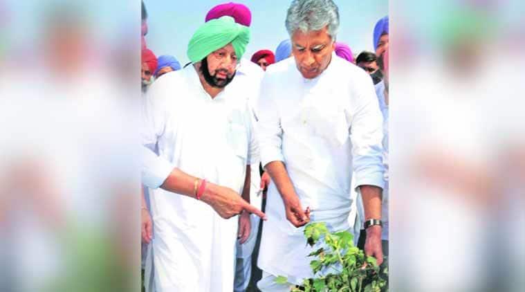 captain amarinder, bjp, sad, shiromani akali dal, farmers, punjab farmers, chandigarh news