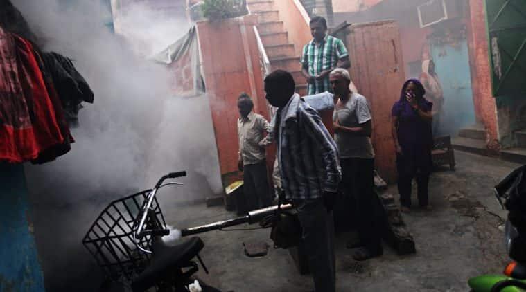 dengue, dengue deaths, dengue in delhi, delhi dengue, delhi govt dengue, delhi dengue deaths, delhi hospital dengue, delhi dengue fogging, delhi dengue awareness, delhi news, health news, NCR news, india news, latest news