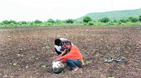 Drought effect: Water cut on industries may go up