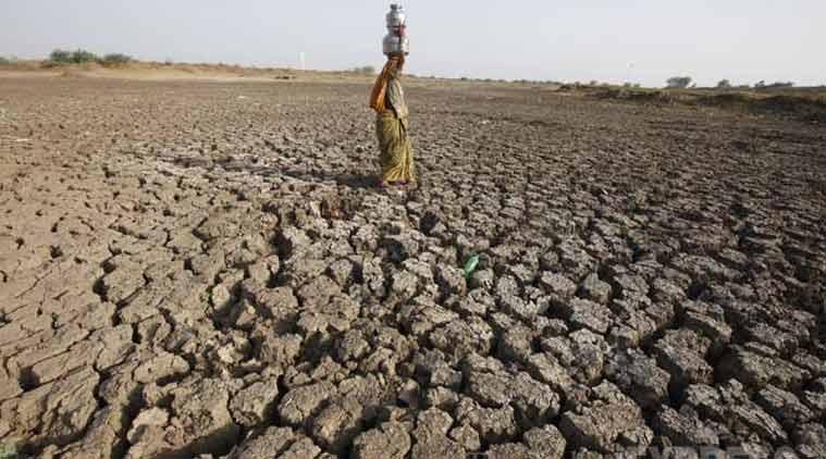 drought-hit Marathwada, Marathwada drought, farmer, indian farmer, farmer suicide, pune farmer suicide, CM Devendra Fadnavis, Fadnavis govt