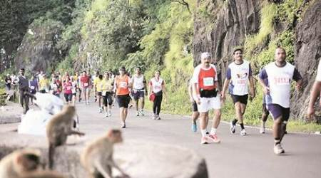 Satara hill half marathon sets Guinness World Record