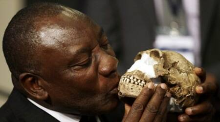 Bones in South African cave reveal new human relative:study