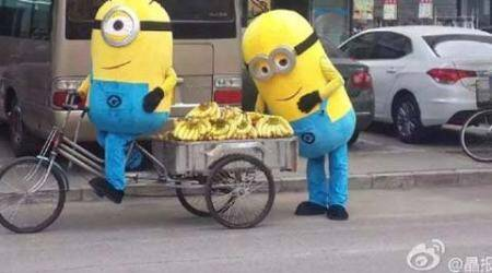 Minions, Minions selling bananas, Minions China Bananas, Minions selling bananas in China, minions movie, minion movie 2015