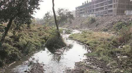 15% cut in stream width, 20% missing — Ram Nadi is dying