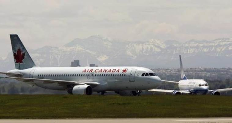 air canada, dog on plane, pilot rescues dog, canda plane dog rescued, world news