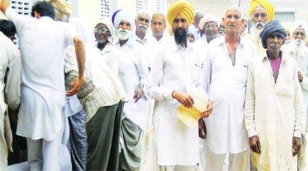 Poppy husk vends re-open in Rajasthan, Punjab doctors say ban had littleimpact