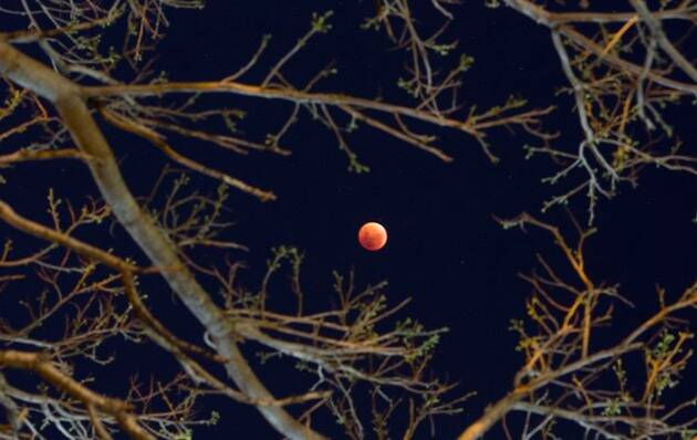supermoon, super blood moon, blood moon, what is Super Moon, Super Blood Moon photos, supermoon photos, #superbloodmoon, blood moon photos, photos supermoon, photos blood moon, what is blood moon, bloodmoon, supermoon photos today