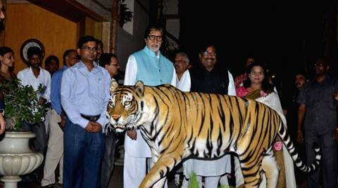 Amitabh Bachchan takes jungle safari; bats for tiger safety