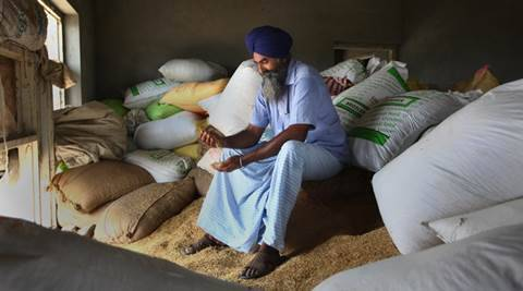 Govt has promised to form panel for better price: Basmati farmers