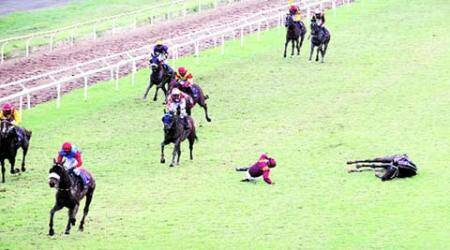Favourite horse Continental trips during race, breaks leg, euthanized; jockey safe