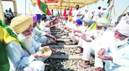 Whitefly attack on cotton: Badals' constituencies fall in worst-affected districts