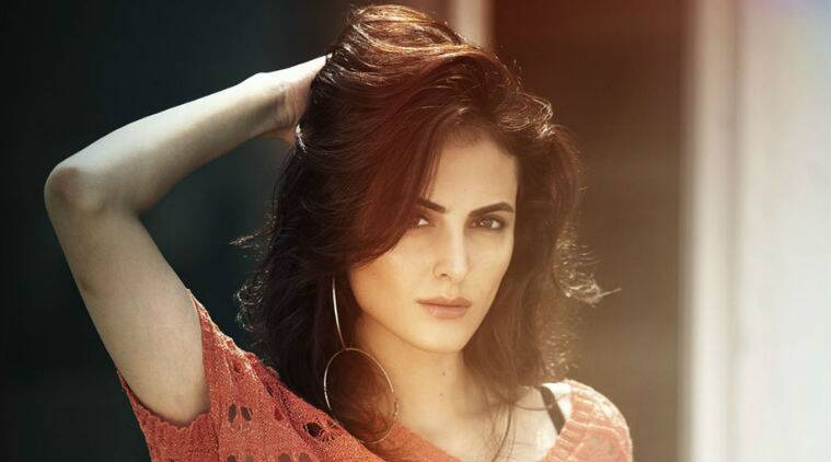 Mandana Karimi, Bigg Boss 9, bollywood