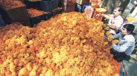 Marigold prices up three-fold  in run-up to Dussehra incity