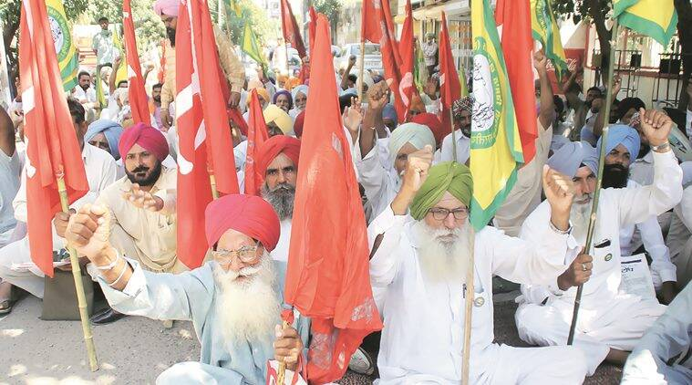 Farmers protest in support of increased compensation for damaged cotton crop in Ludhiana on Friday.  (Express Photo by Gurmeet Singh)