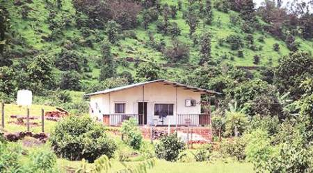 'Illegal' constructions come up in Koyna Wildlife Sanctuary