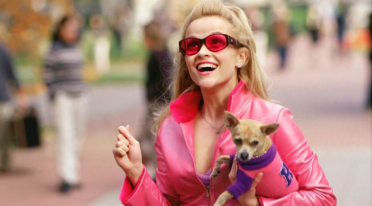 Reese Witherspoon, Legally Blonde 3, Reese Witherspoon Legally Blonde 3, Reese Witherspoon Legally Blonde, Reese Witherspoon Elle Woods, Entertainment news