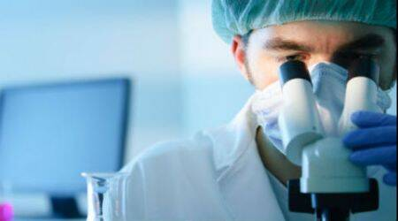 Indians are the top Asian researchers in the US:Report