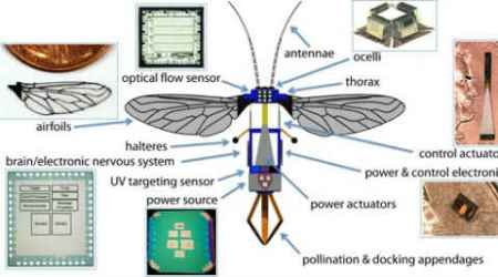 Tiny robot, Robot that can fly, RoboBee, insect like robot, robots, Harvard University, John A Paulson School of Engineering and Applied Science, SEAS, Harvard Microrobotics Lab, science, science news, tech news, technology