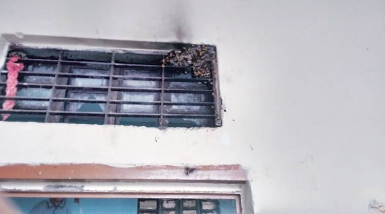 The wasps have taken over classrooms, store rooms and the school playground.