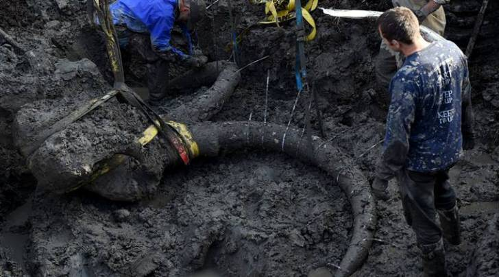 In this photo taken Thursday, Oct. 1, 2015, University of Michigan professor Dan Fisher, top left, leads a team of Michigan students and volunteers as they excavate woolly mammoth bones found on a farm near Chelsea, Mich. (Melanie Maxwell/The Ann Arbor News via AP)
