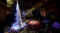 Australian Christmas tree sets Guinness record with more than half-a-million lights