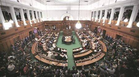 OPINION: Jokepal or Lokpal?