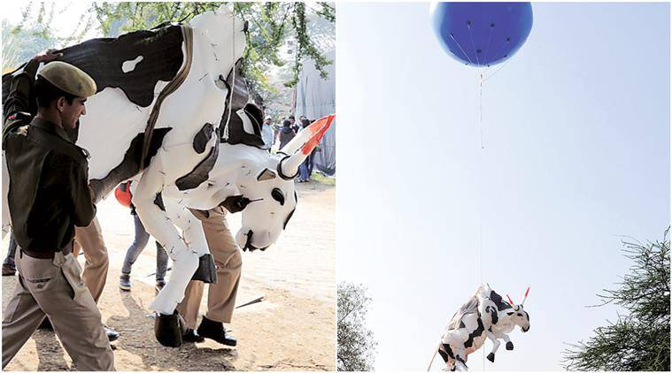jaipur art summit, jawahar kala kendra, art summit jaipur, jaipur event, jaipur art summit cow, jaipur news, india news