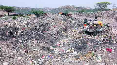 mohali, mohali pollution, mohali garbage, mohali sewers, sewers in mohali, mohali news, india news