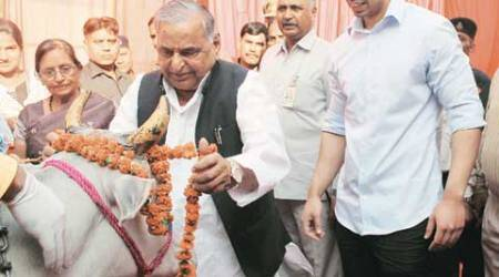 In Saifai, 3-day Diwali as its most famous son turns76
